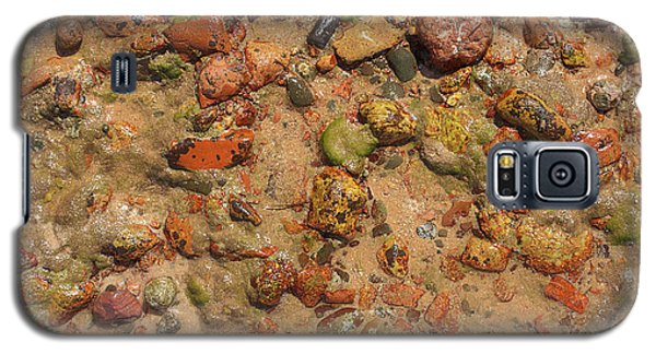 Rocky Beach 5 Galaxy S5 Case