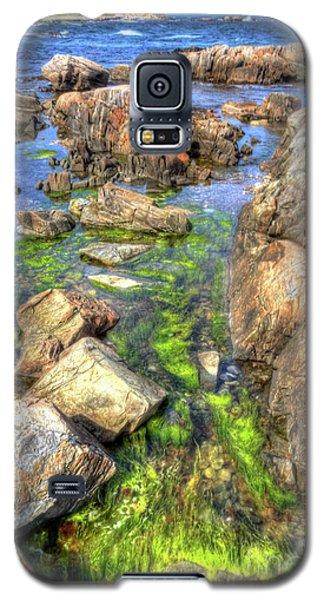 Rocky Coast Galaxy S5 Case