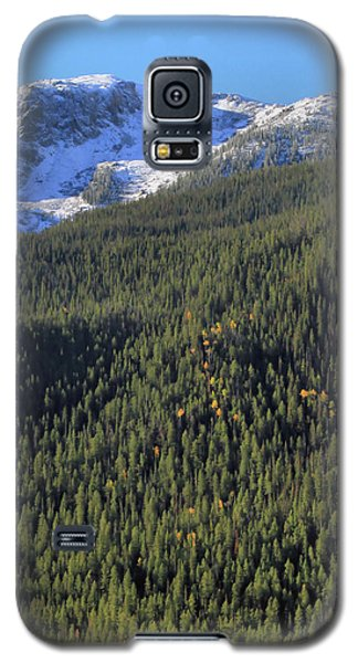 Galaxy S5 Case featuring the photograph Rocky Mountain Evergreen Landscape by Dan Sproul