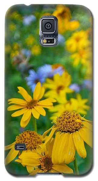 Rocky Mountain Wildflowers Galaxy S5 Case