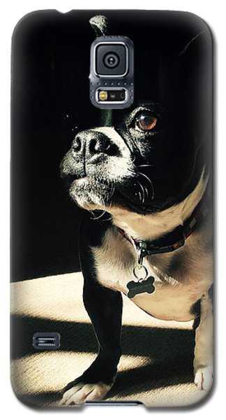 Galaxy S5 Case featuring the photograph Rocky by Sharon Jones