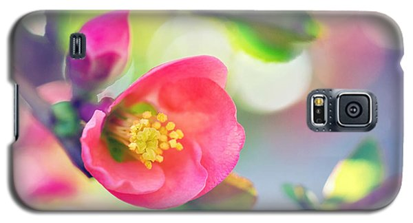 Romancing Spring I Galaxy S5 Case