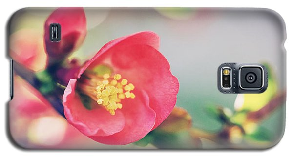 Romancing Spring II Galaxy S5 Case