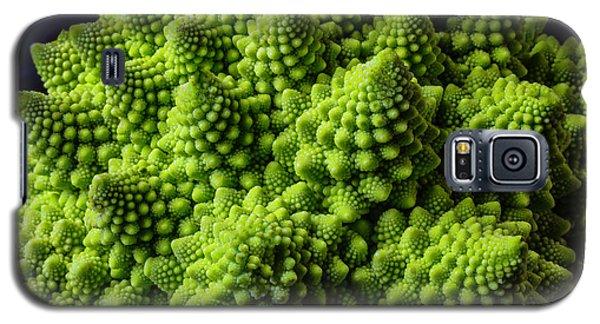 Romanesco Broccoli Galaxy S5 Case by Garry Gay