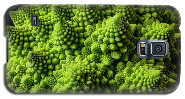 Romanesco Broccoli Galaxy S5 Case by Garry Gay