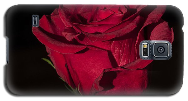 Romantic Rose Galaxy S5 Case