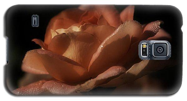Romantic September Rose Galaxy S5 Case