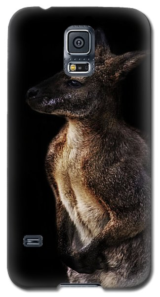 Roo Galaxy S5 Case by Martin Newman
