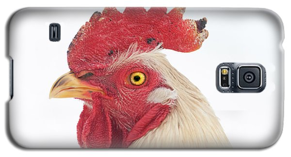 Rooster Named Spot Galaxy S5 Case
