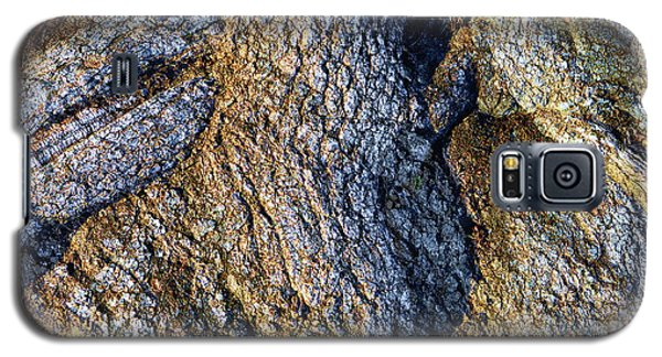 Galaxy S5 Case featuring the photograph Root Waves by Glenn McCarthy Art and Photography