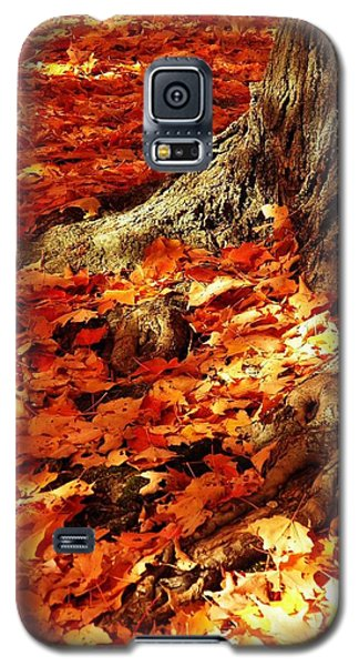Rooted In New England Galaxy S5 Case
