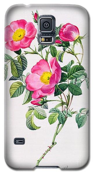 Rosa Lumila Galaxy S5 Case