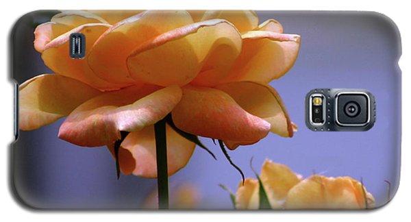 Rose 1156 H_2 Galaxy S5 Case