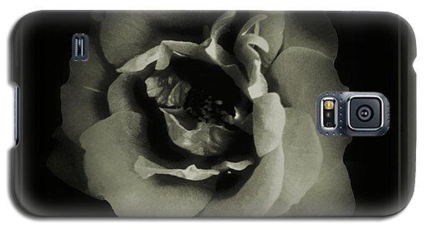 Rose 12 Galaxy S5 Case by John Krakora