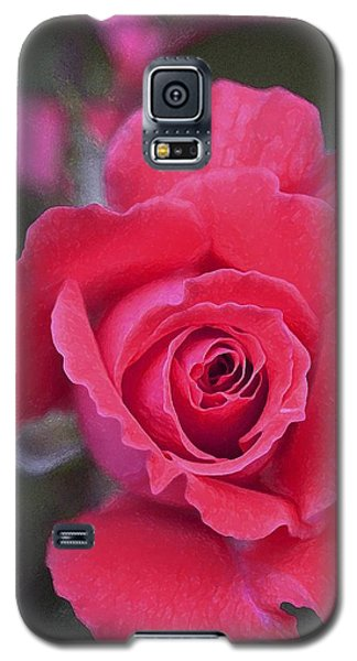 Rose 160 Galaxy S5 Case by Pamela Cooper