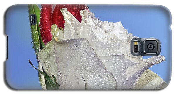 Galaxy S5 Case featuring the photograph Rose And Tulip by Elvira Ladocki