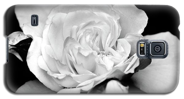 Galaxy S5 Case featuring the photograph Rose Black And White by Christina Rollo