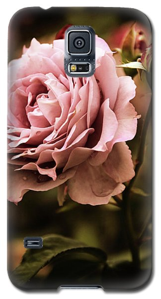 Rose Blooms At Dusk Galaxy S5 Case by Jessica Jenney