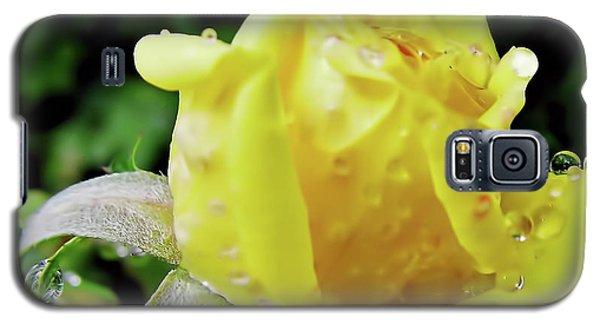 Rose Bud Dew Drops Galaxy S5 Case