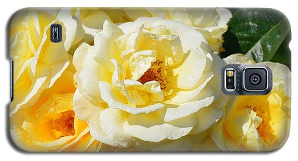 Rose Bush Galaxy S5 Case