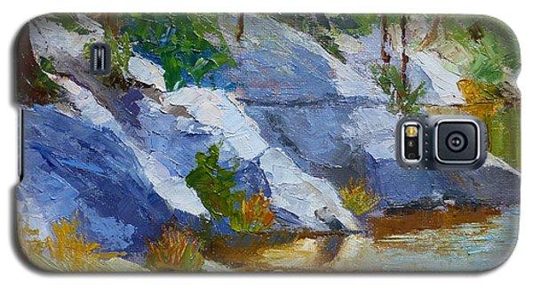 Rose Canyon Lake Galaxy S5 Case