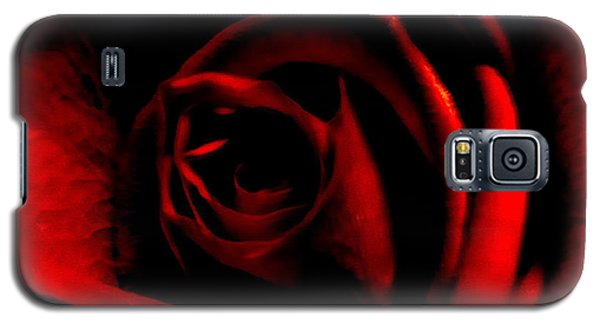Rose Galaxy S5 Case by CML Brown