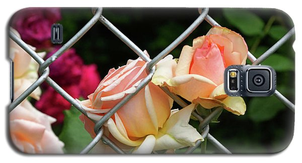 Rose Fence Galaxy S5 Case