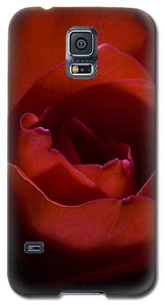 Galaxy S5 Case featuring the photograph Rose by Gabor Pozsgai