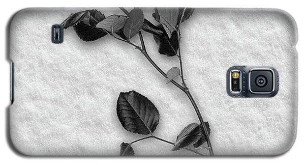 Rose In Snow Galaxy S5 Case