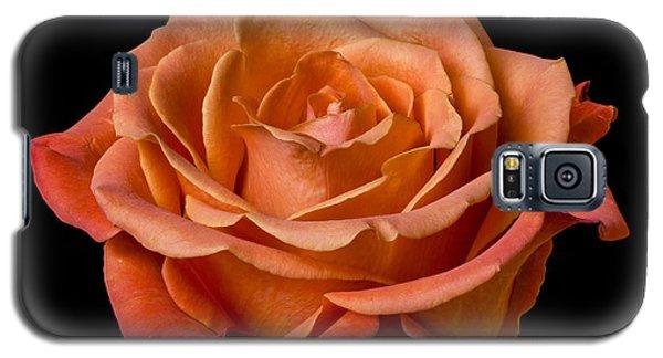 Rose Galaxy S5 Case by Jim Hughes
