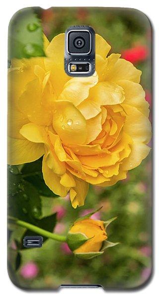 Rose, Julia Child Galaxy S5 Case