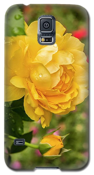 Rose, Julia Child Galaxy S5 Case