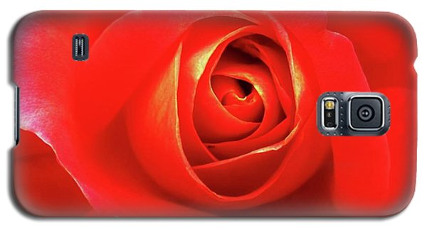Rose Galaxy S5 Case