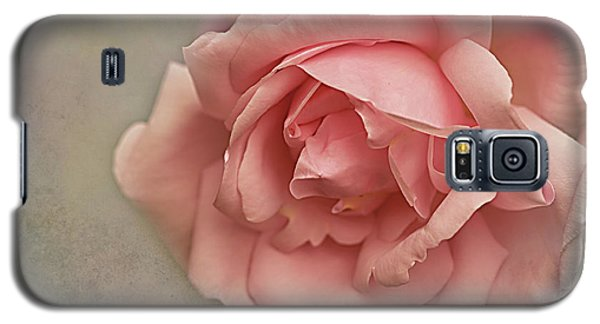 Galaxy S5 Case featuring the photograph Rose New Dawn by Jacqi Elmslie