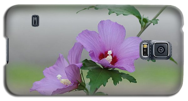 Rose Of Sharon Pair Galaxy S5 Case