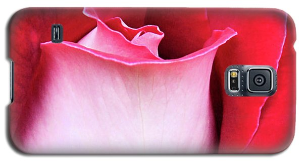 Galaxy S5 Case featuring the photograph Rose Petals by Kristin Elmquist