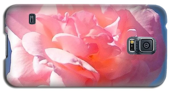 Galaxy S5 Case featuring the photograph Rose Rose by Marc Philippe Joly