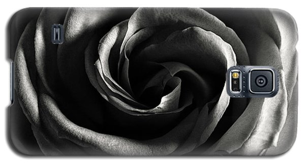 Rose Study 1 In Black And White Galaxy S5 Case
