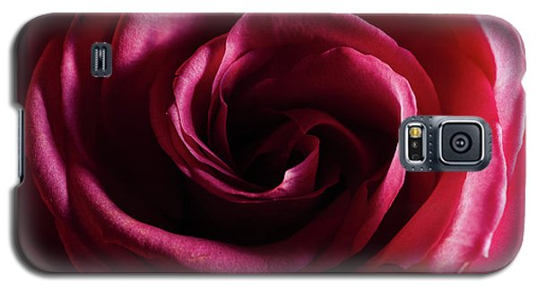 Rose Study 1 Galaxy S5 Case