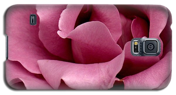 Rose Violet Waves Galaxy S5 Case by Barbara Middleton