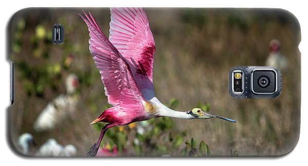 Roseate Spoonbill Flying Galaxy S5 Case