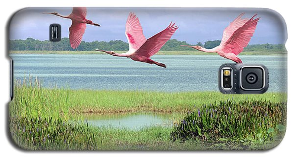 Roseate Spoonbills Of Florida Bay Galaxy S5 Case