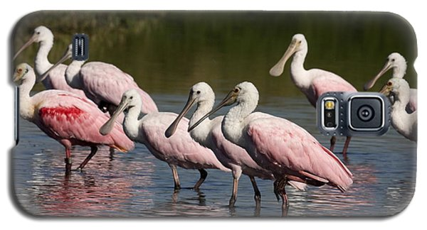 Roseate Spoonbills Galaxy S5 Case by Sally Weigand