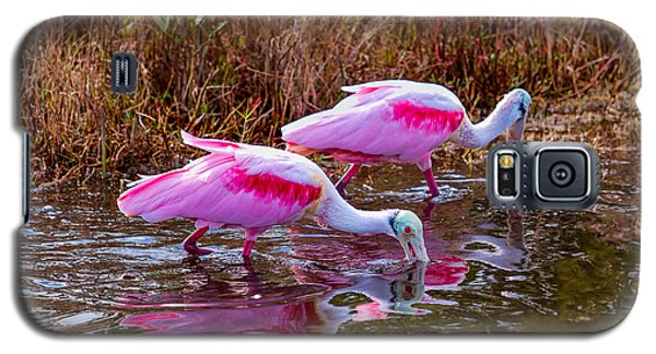 Roseate Spoonbills Swishing For Food Galaxy S5 Case