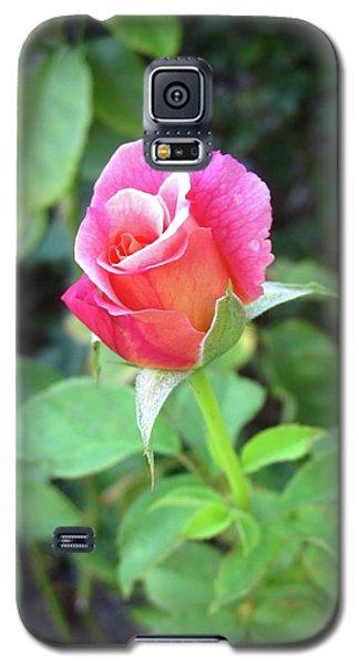 Rosebud Galaxy S5 Case by Mary Ellen Frazee