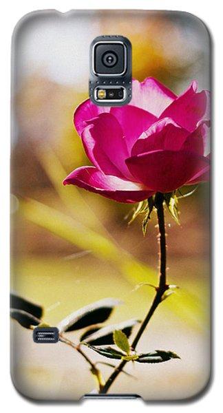 Rosebud Galaxy S5 Case