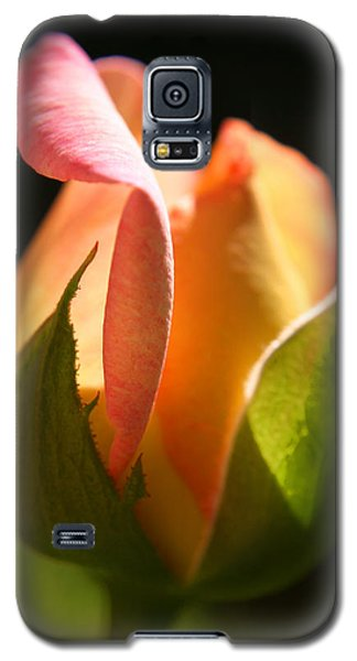 Rosebud Galaxy S5 Case by Ralph A  Ledergerber-Photography