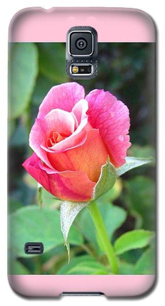 Rosebud With Border Galaxy S5 Case by Mary Ellen Frazee