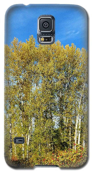 Rosehips And Cottonwoods Galaxy S5 Case