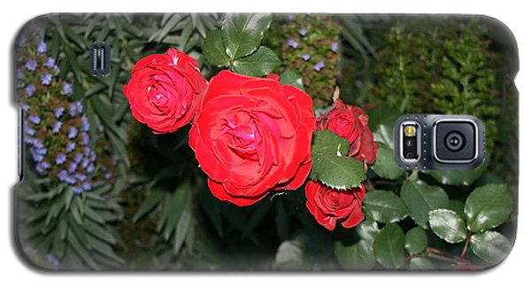 Roses Among Galaxy S5 Case